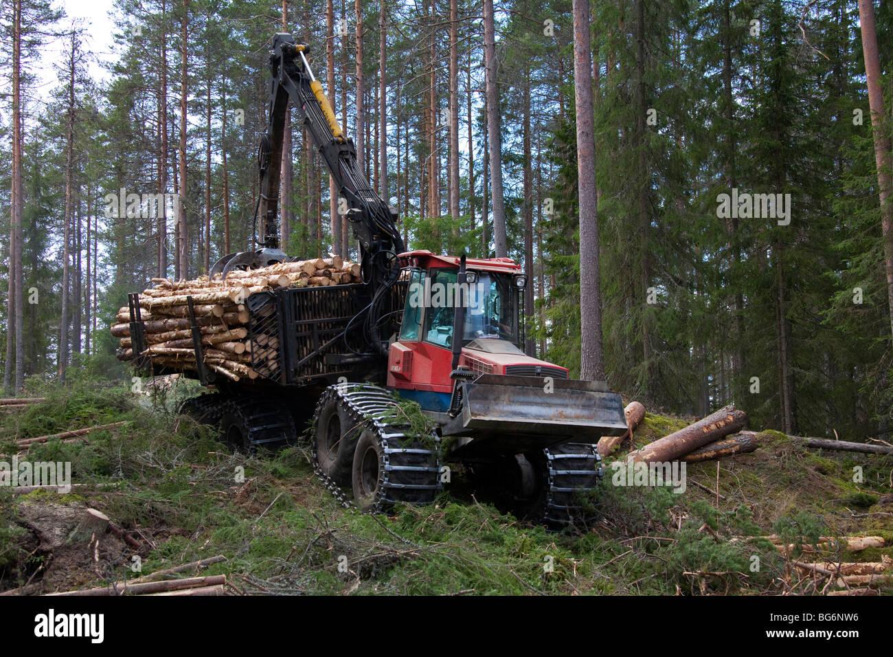 Timberjack fotos timberjack imagens de stock alamy indstria madeireira mostrando madeira rvores sendo carregado em mquinas florestais timberjack imagens de stock fandeluxe Gallery