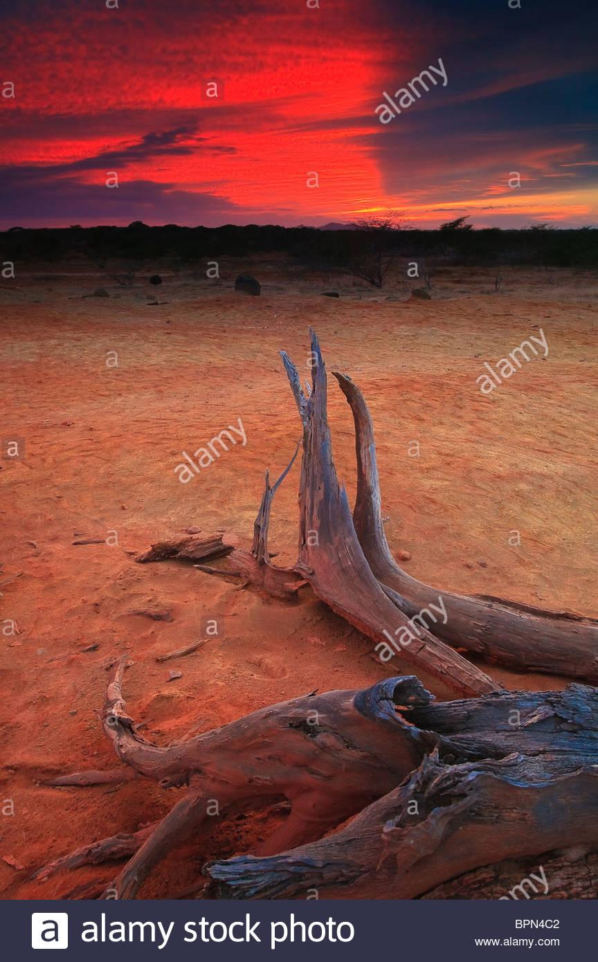 O pôr do sol no parque nacional Sarigua (deserto), na província de Herrera, República do Panamá. Imagens de Stock