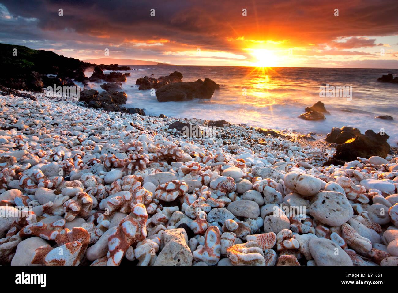 Pôr do sol na praia com coral. Maui Havaí. Imagens de Stock