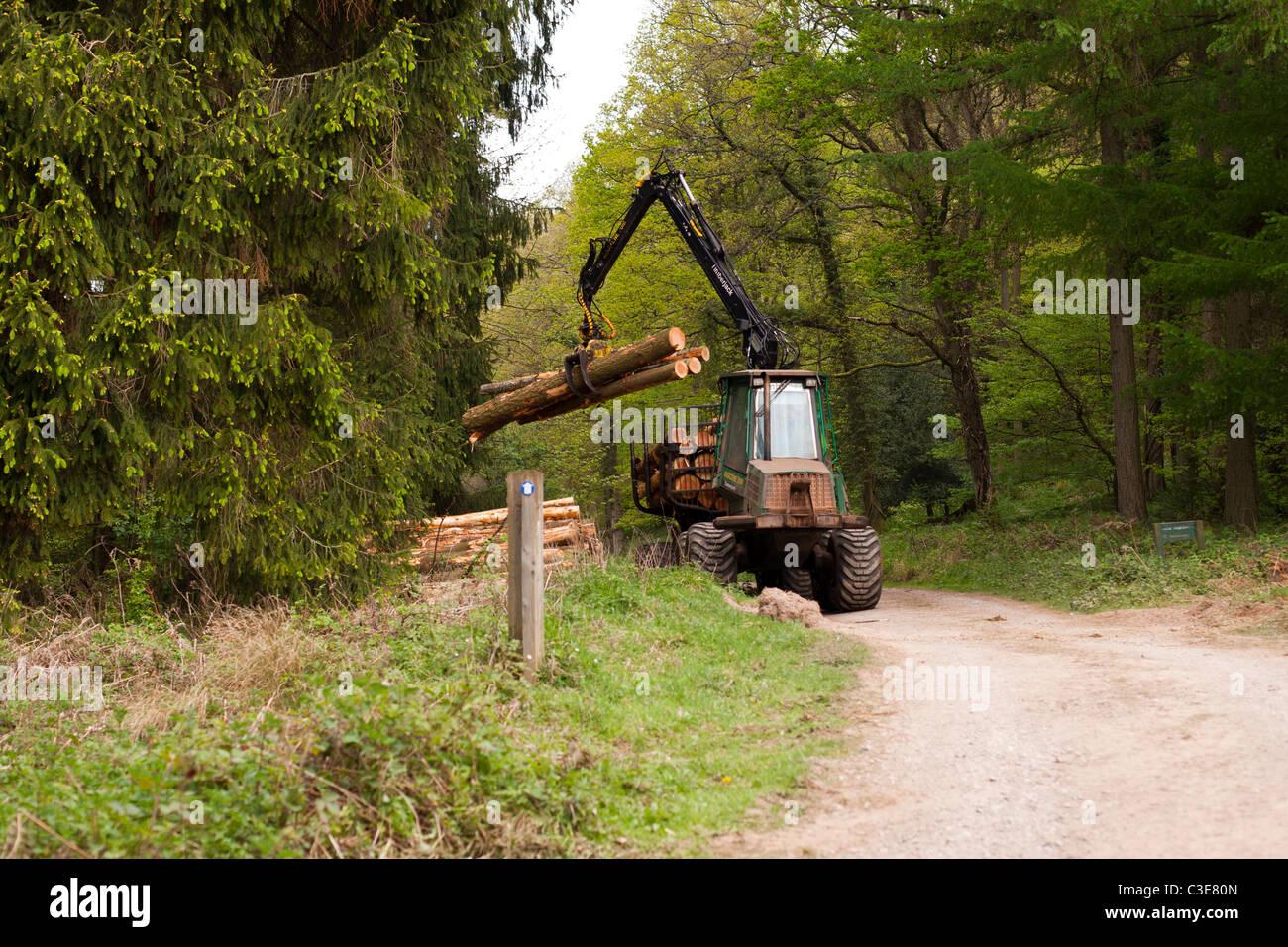 Timberjack fotos timberjack imagens de stock alamy fmg timberjack recolha de rvores da floresta de dean imagens de stock fandeluxe Gallery