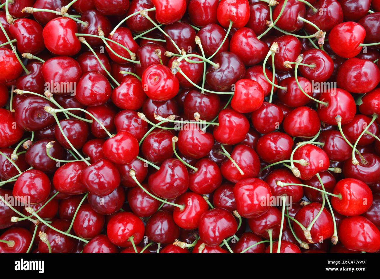Textura de frutos cereja Imagens de Stock