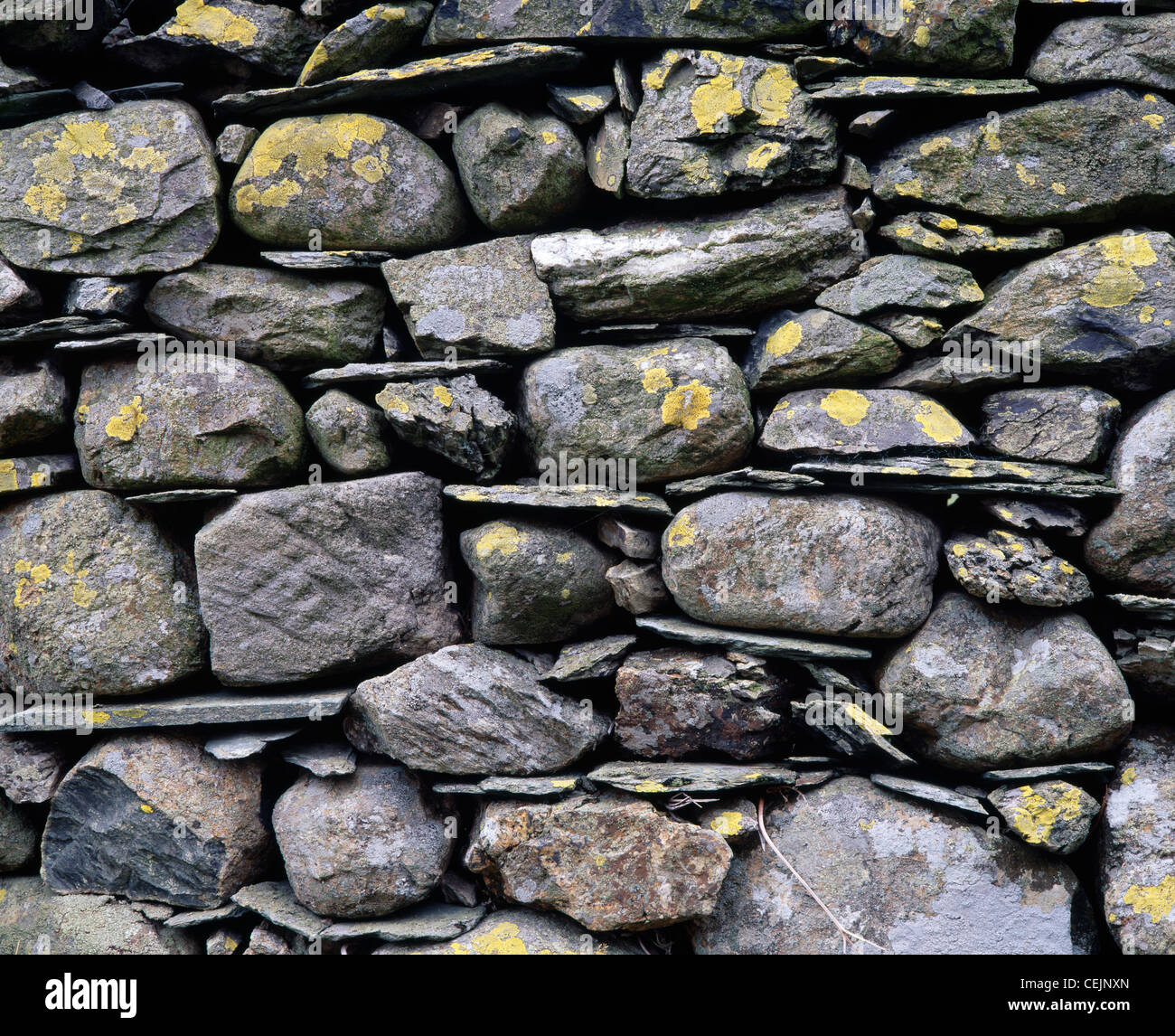 Parede Drystone close-up. Newlands valley, Cumbria, Inglaterra, Reino Unido. No parque nacional Lake District. Imagens de Stock