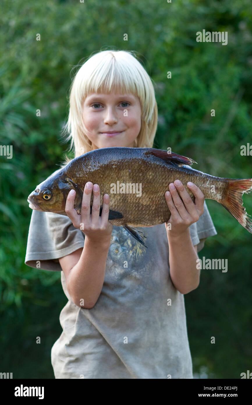 Douradas do comum de água doce, goraz, carpa dourada, pesca, pesca desportiva, Junge, Tipo mit Brassen, Angeln, Imagens de Stock