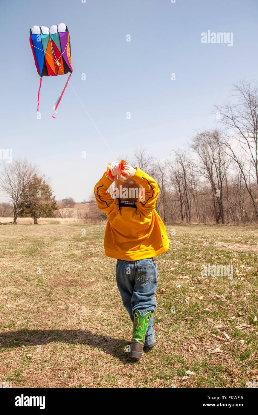 Boy flying kite no país Imagens de Stock