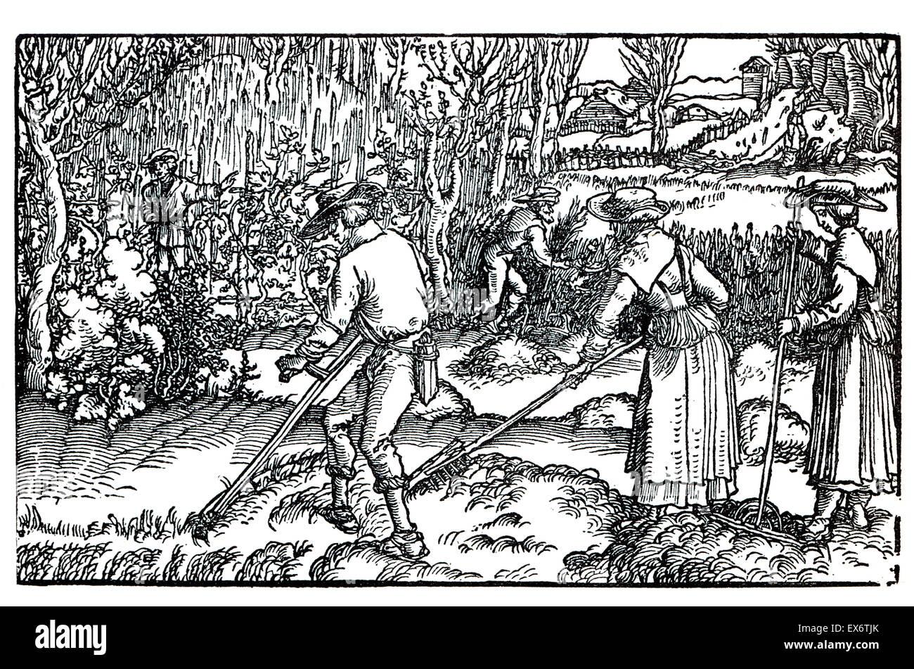 A agricultura do século XVI, 1582 xilogravura ilustração por Hans Burgmair (Burgkmair) Imagens de Stock