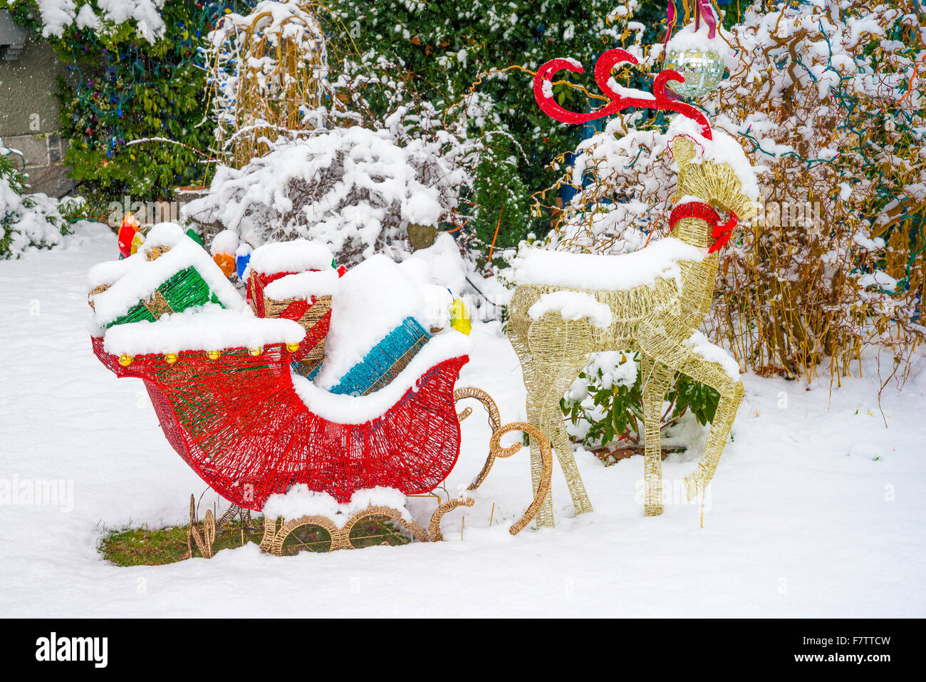 Outdoor Christmas Sleigh.Reindeer And Sleigh With Presents Outdoor Christmas