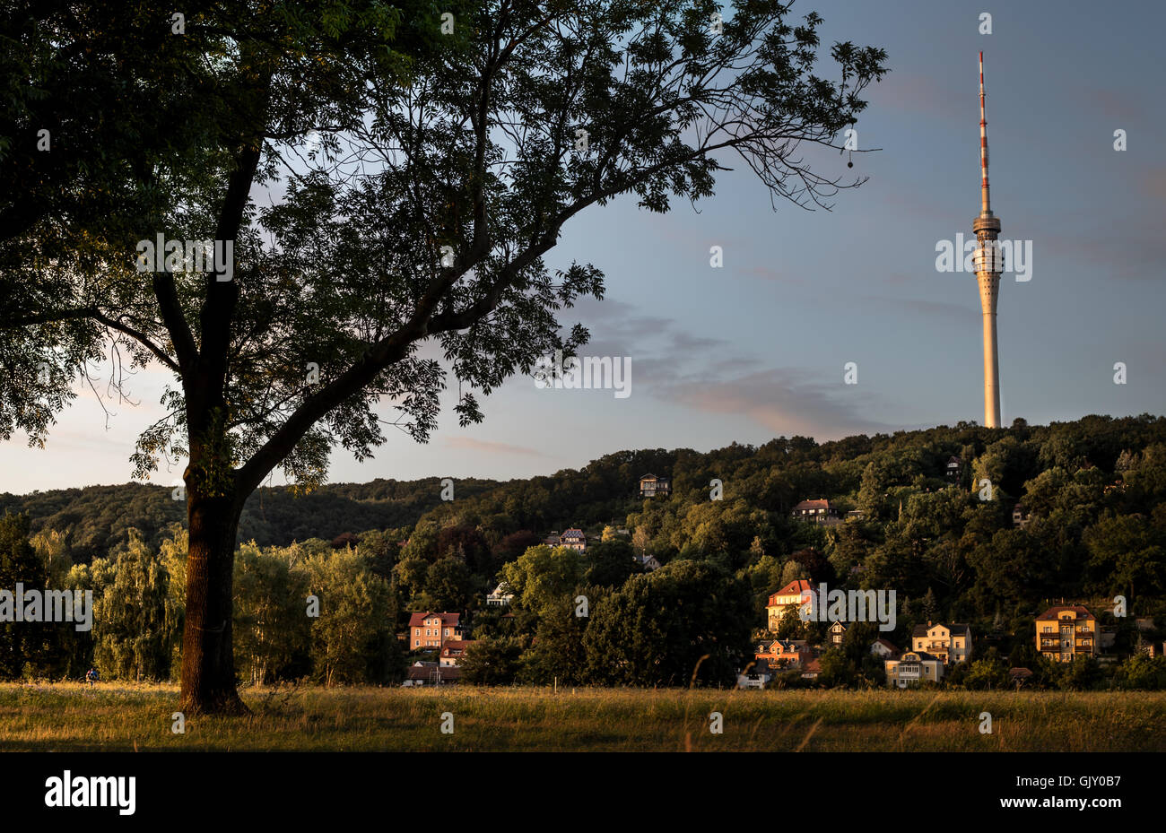 Margem do Rio Elba, vista para o 'Fernsehturm, Dresden, Saxónia, Alemanha (dresden elba torre de tv panorama). Imagens de Stock