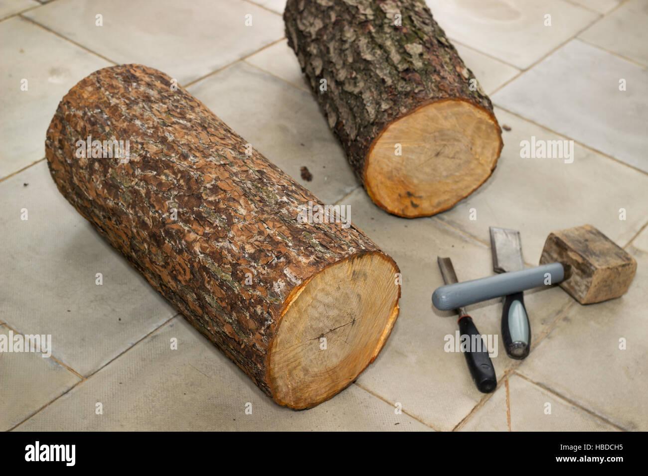 Dois tarugos para fabricação birdhouses Imagens de Stock