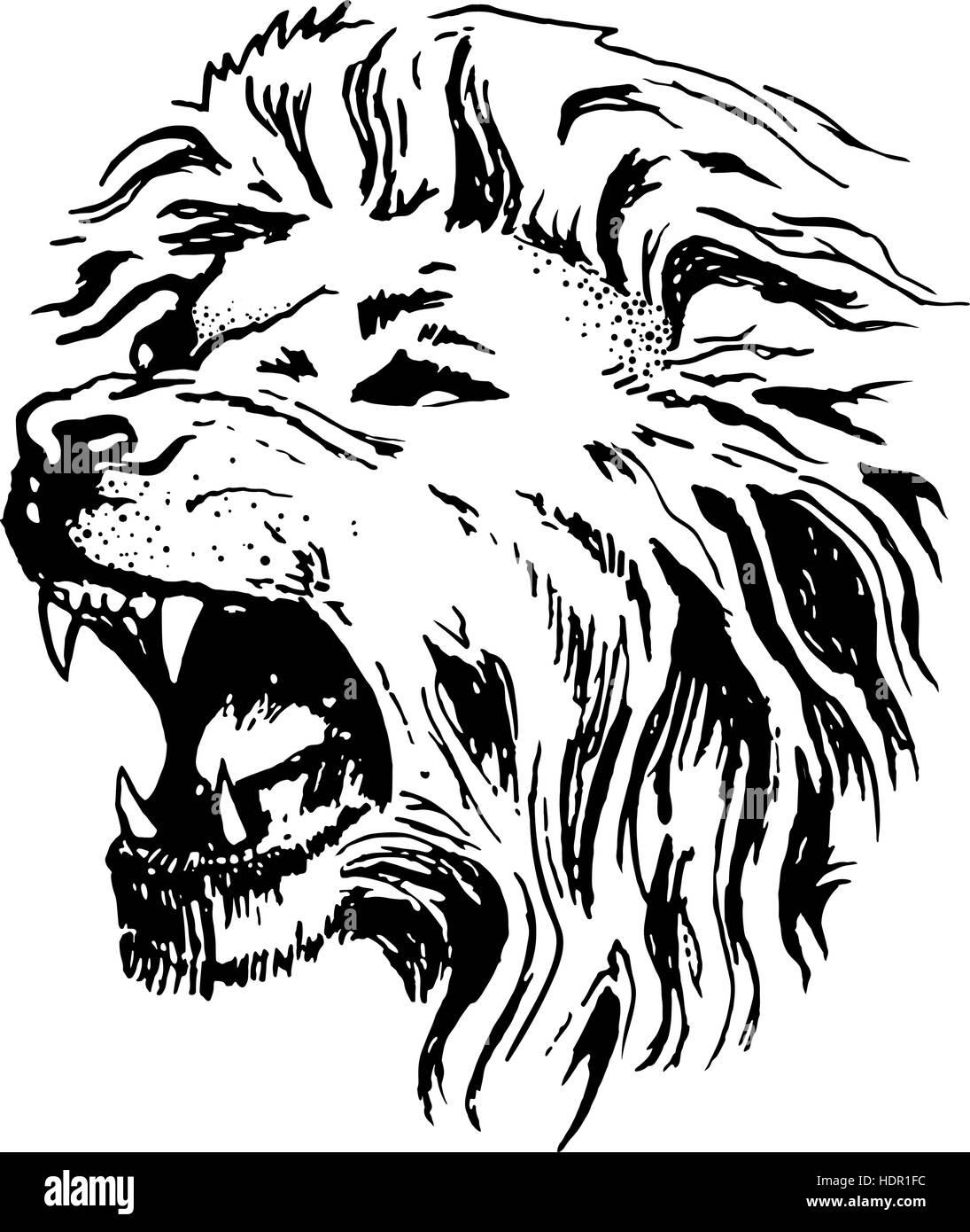 desenho vetor cabeça de leão de boca aberta grin ilustração do vetor