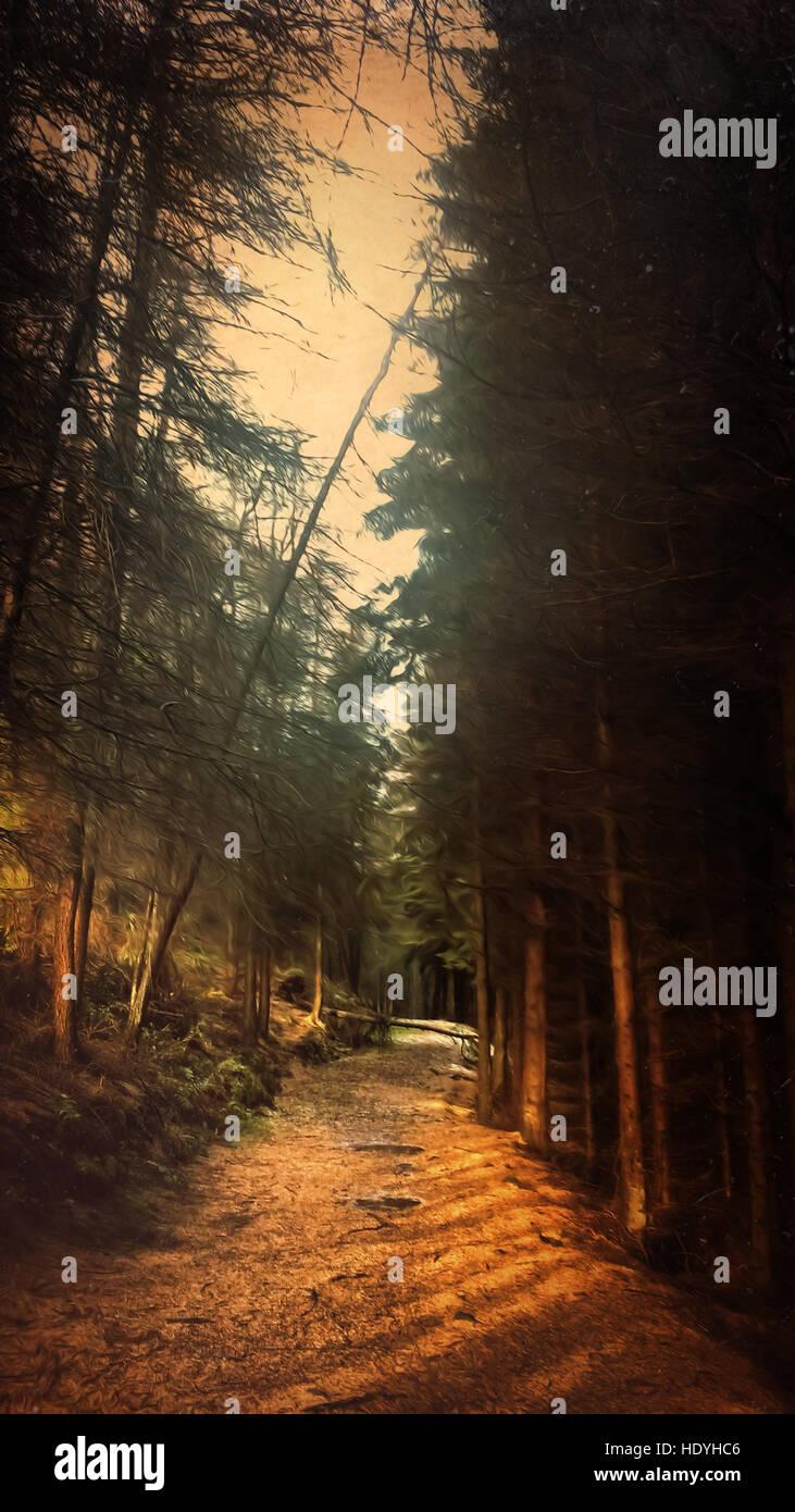 Caminho na floresta Imagens de Stock