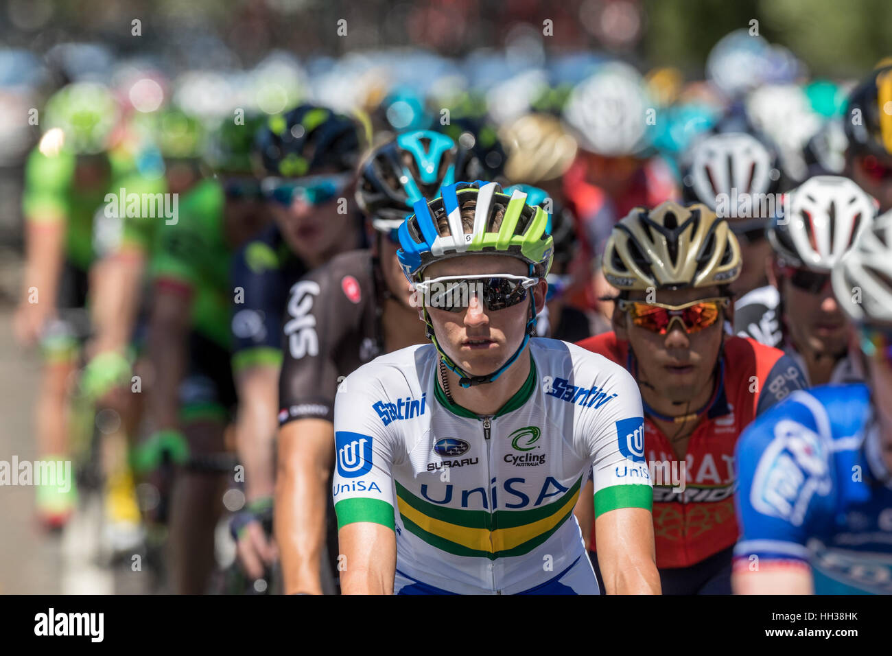Adelaide, na Austrália. 17 de Janeiro de 2017. Os ciclistas da equipe UNISA (UNA) durante a Fase 1 do Santos Imagens de Stock