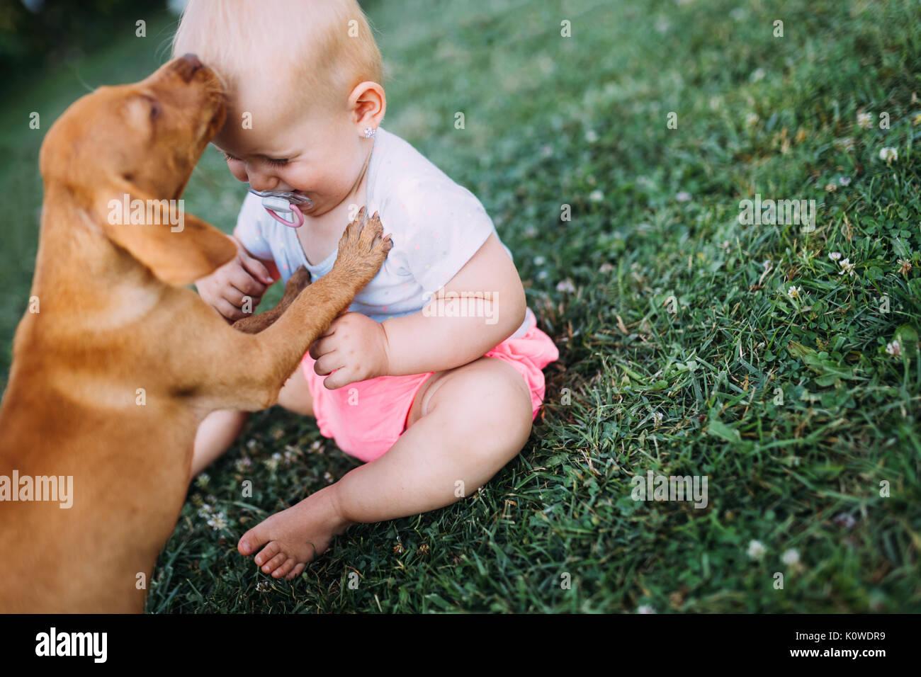 Retrato de bebé amoroso a brincar com o cão Imagens de Stock