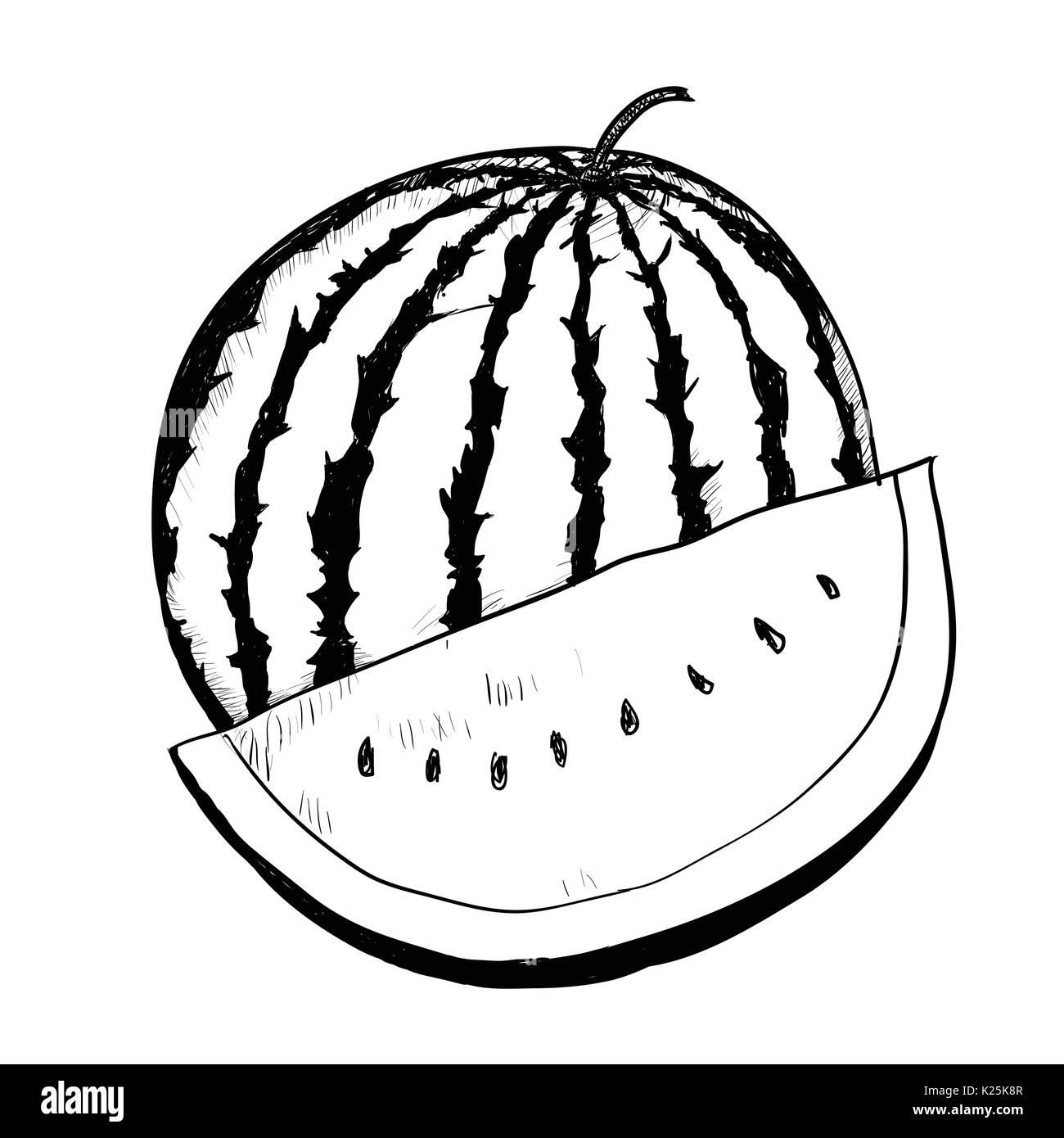 desenho de mão de melancia sobre fundo branco preto e branco linha