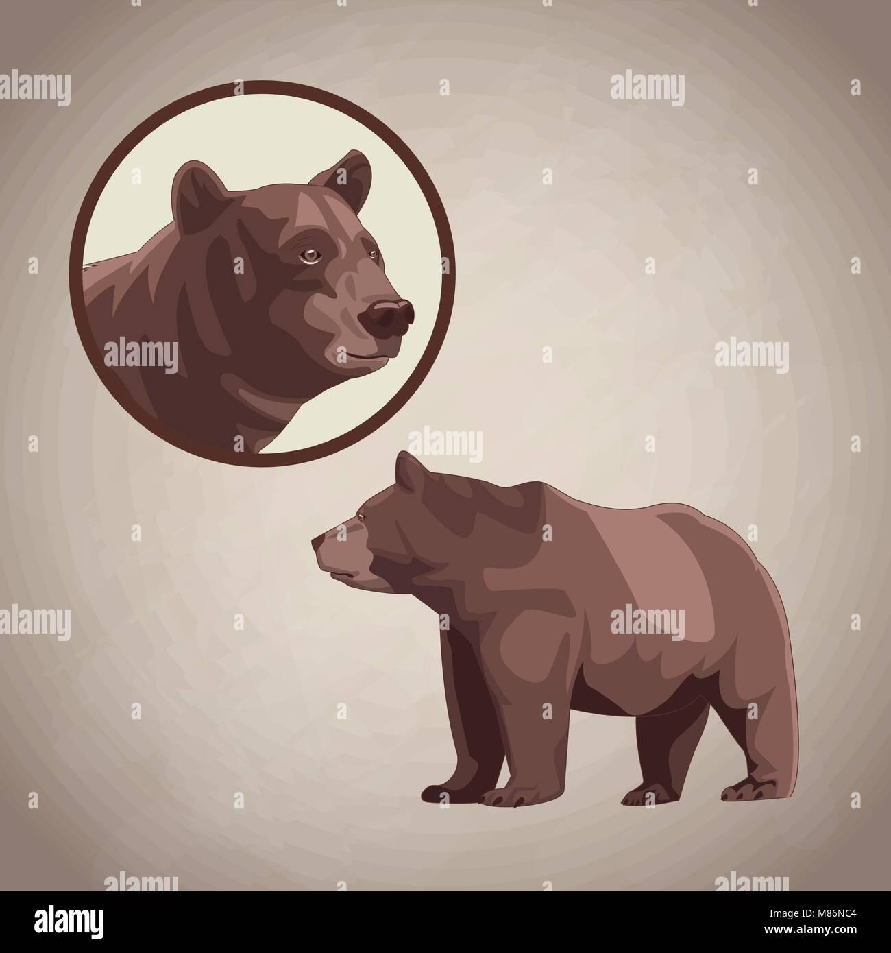 desenho urso sobre fundo marrom design gráfico ilustração vetorial
