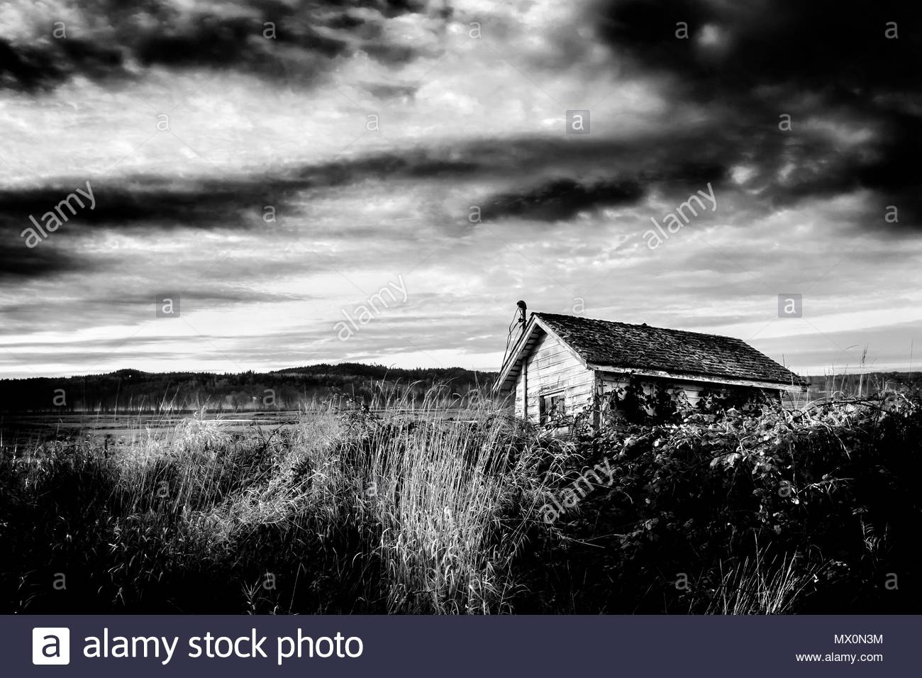 Black and white fine art landscape of abandoned building in field