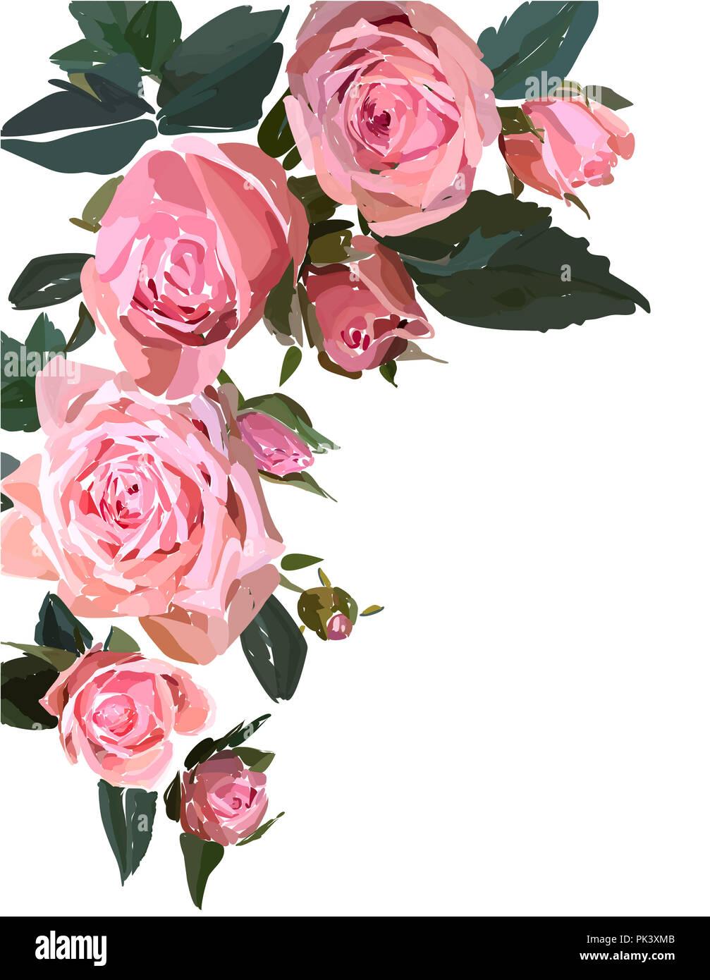 Floral Design Illustration Garden Flower Pink Rose Isolated