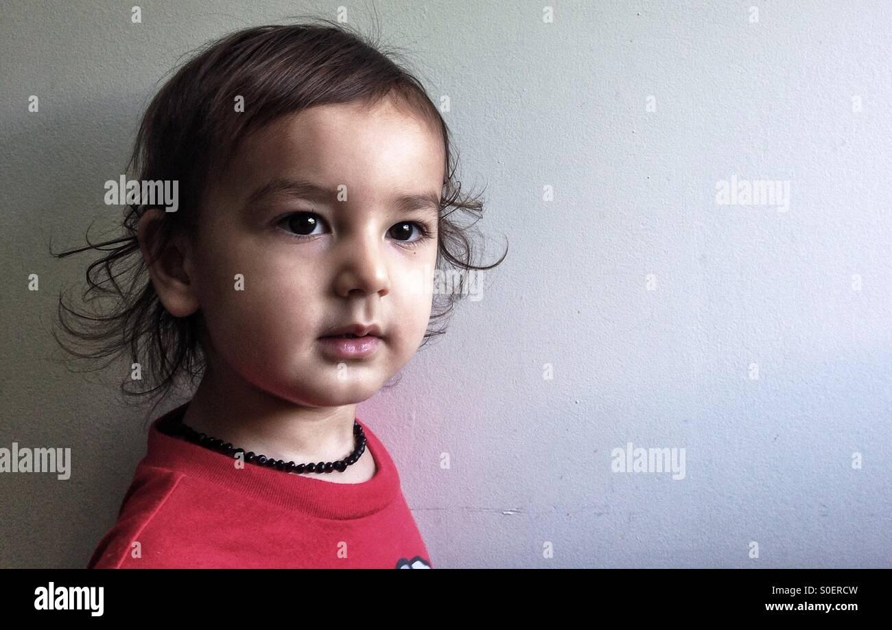 Retrato de dois anos de idade boy Imagens de Stock