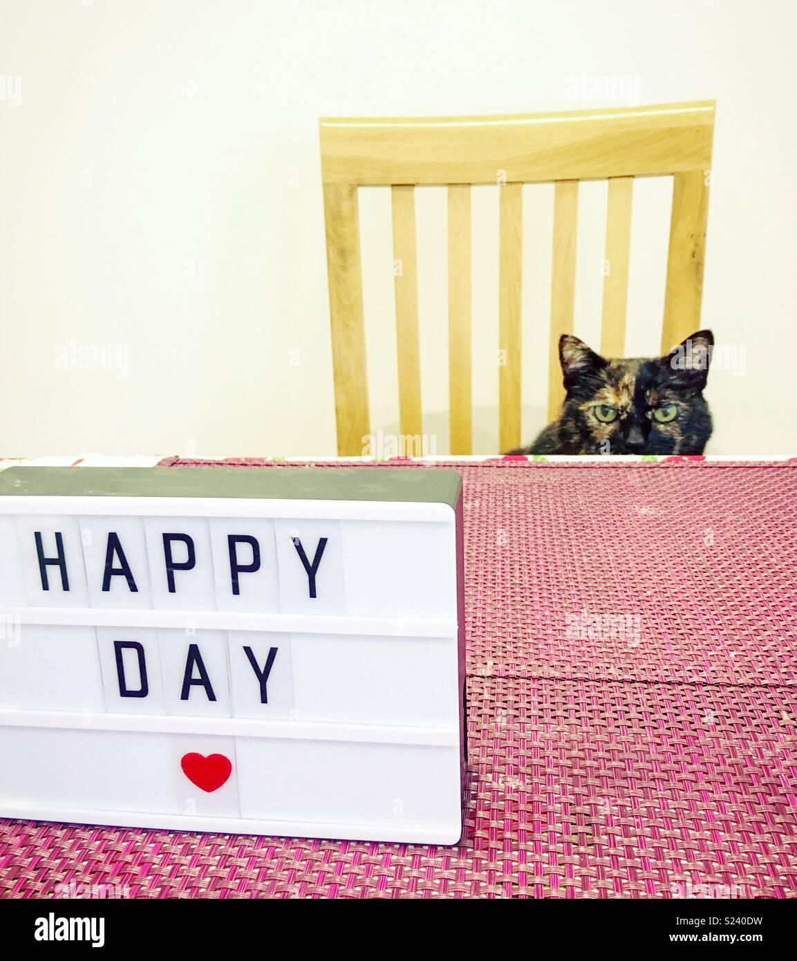 Dia feliz! Imagens de Stock