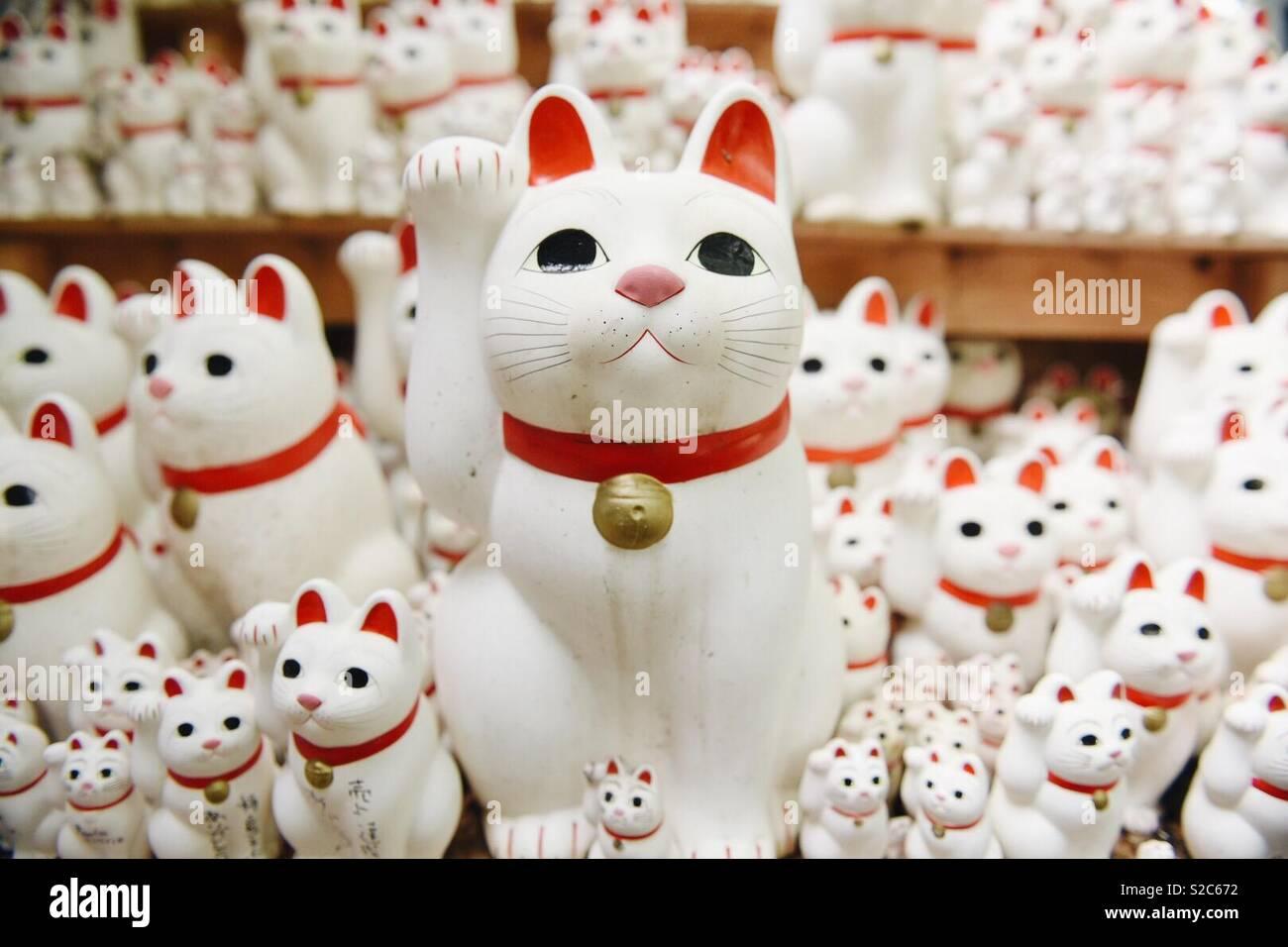 Gato acenando Imagens de Stock