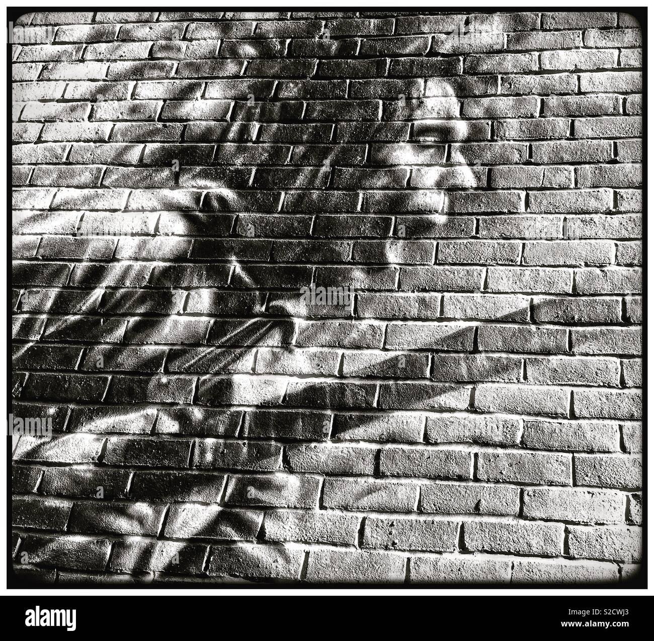 A arte da parede em Brockley, Sul de Londres. Imagens de Stock