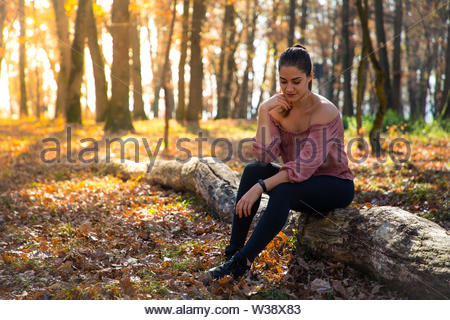 Beautiful girl siting on a trunk with orange foliage and golden sunlight - Stock Image