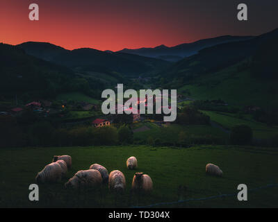 Arrazola village with sheep in Atxondo at the evening - Stock Image