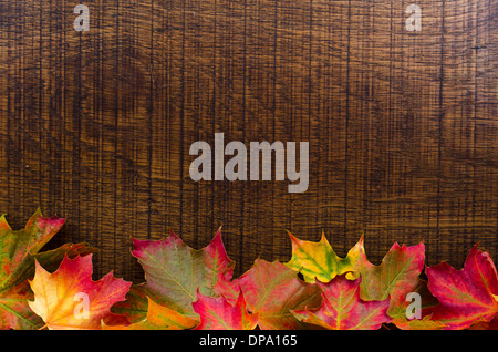 An oak wood background decorated with colourful autumn leaves along bottom edge, with room for text. - Stock Image