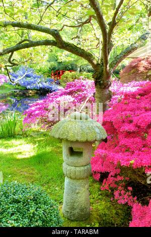 Japanese garden, Park Clingendael, The Hague, Netherlands - Stock Image