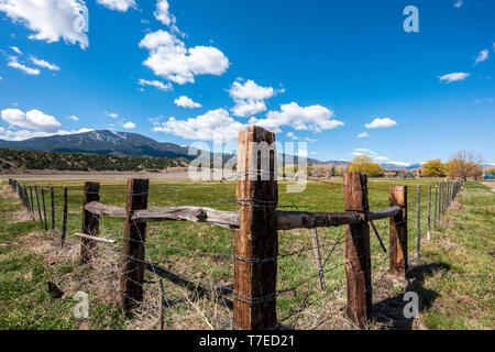 Barbed wire and wooden fence posts border ranch pasture; Vandaveer Ranch; Salida; Colorado; USA - Stock Image