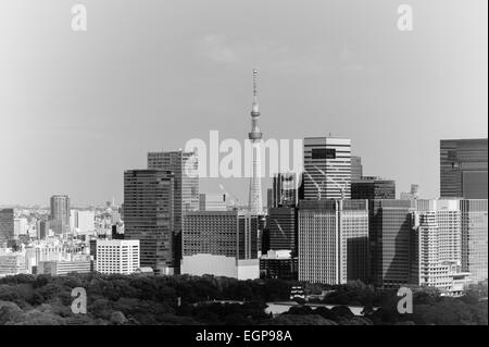 Tokyo Skytree behind other buildings, including the Nikkei building - Stock Image