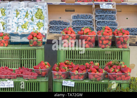 PRAGUE, CZECH REPUBLIC 16-04-2019: Berries in the market - strawberryes, blackberryes, grape - variety of berries and fruits for sale at a grocery sto - Stock Image