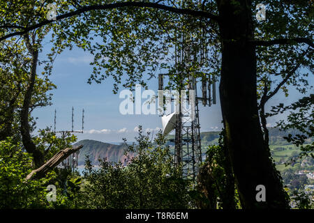 View looking at mobile telephone masts amidst trees in Page Wood, on Soldiers Hill, to the east of Sidmouth, Devon, UK - Stock Image