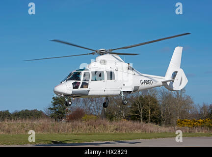 Eurocopter AS-365N-2 Dauphin based at PDG helicopters Inverness Dalcross Airport. Highland Region. Scotland. - Stock Image
