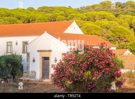 SETUBAL, PORTUGAL – AUGUST 25, 2018: Winery Quinta de Alcube in Setubal region, Portugal. - Stock Image