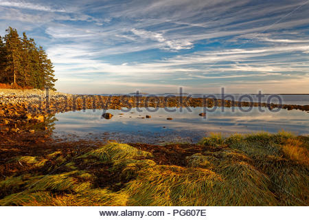 Tidepool in Acadia National Park, Maine - Stock Image