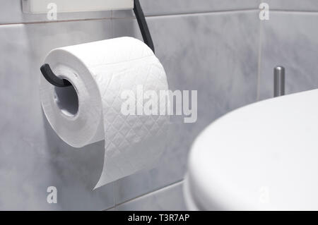 Roll of toilet paper in a tiled bathroom - Stock Image