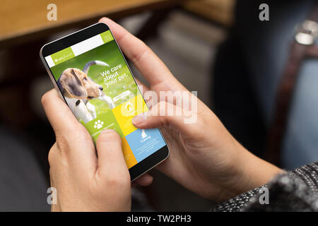 mobile design concept: girl using a digital generated phone with pet website online on the screen. All screen graphics are made up. - Stock Image