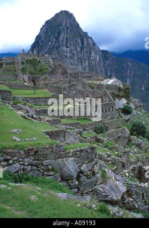 Machu Picchu, Peru, South America - Stock Image