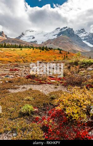 Barren landscape, glacial valley, Mount Athabasca, Icefields Parkway, Jasper National Park National Park - Stock Image