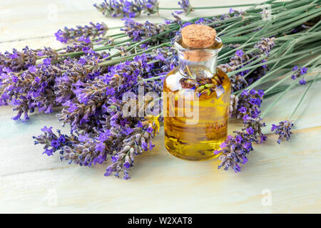 Lavender essential oil with lavender flowers on a rustic wooden background with copyspace. A glass bottle with a cork with buds infusing - Stock Image
