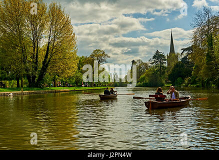 Two couples in rowing boats on the River Avon in Stratford upon Avon, Warwickshire, with Holy Trinity church spire - Stock Image
