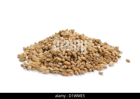 Pile of wheat grains - Stock Image