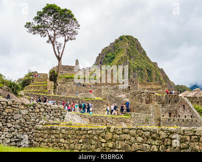 Machu Picchu, Peru - January 5, 2017. View of the tourists of the Machu Picchu citadel - Stock Image