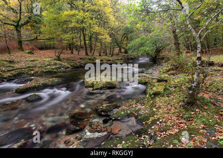 River Walkham in early autumn Grenofen Devon Uk - Stock Image