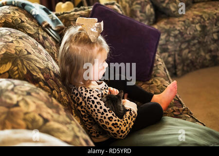 A three year old Caucasian girl cuddles a kitten while sitting on a sofa. USA. - Stock Image