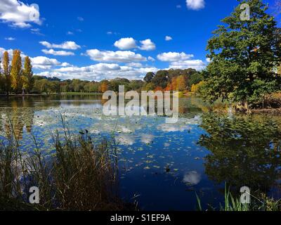 Canberra lake in Autumn at Commonwealth Park - Stock Image