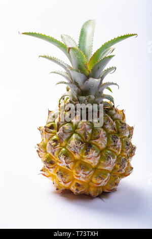 One whole fresh ripe pineapple or sweet baby ananas isolated close up - Stock Image