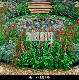 Colourful cottage garden flower border with pool - Stock Image