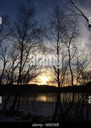 Teiglandsvegen 29, Nyborg, Norway. 11th Jan, 2016. EUweather: Beautiful low sunlight streaking over Langavatnet, - Stock Image
