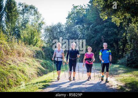 Group of senior practicing nordic walking. - Stock Image
